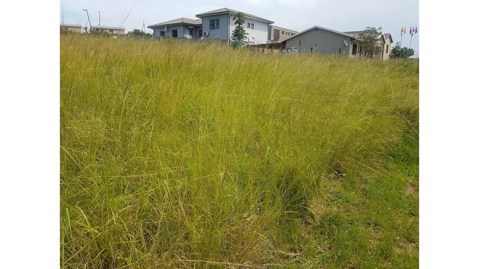 Land in Stanger Central For Sale