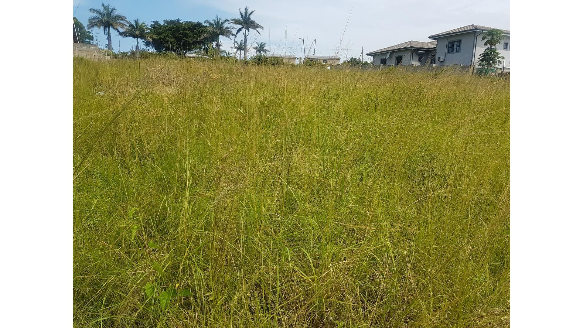 Vacant Land / Plot in Stanger Central For Sale