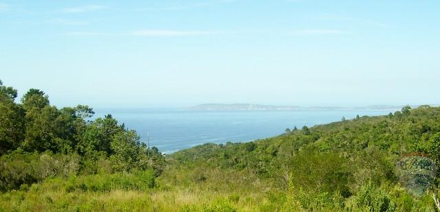 Agricultural Holding in Plettenberg Bay For Sale