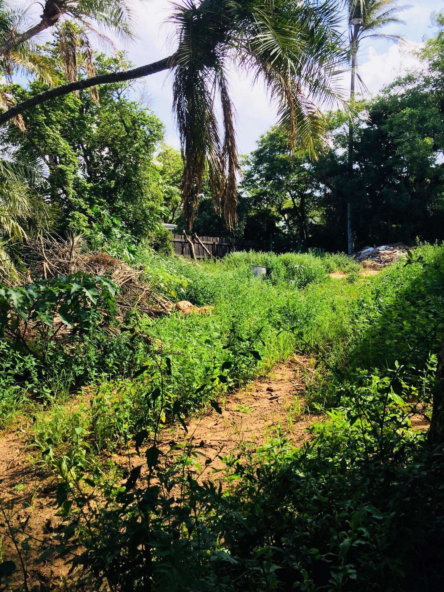 Vacant Land / Plot in Sunnyside For Sale