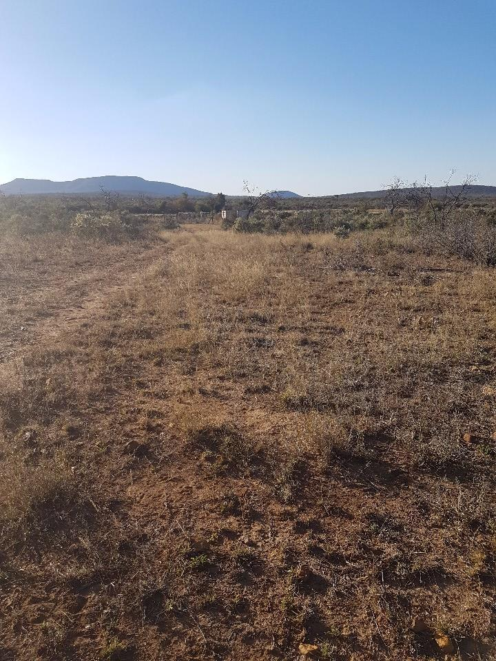 Land in Lion Park For Sale