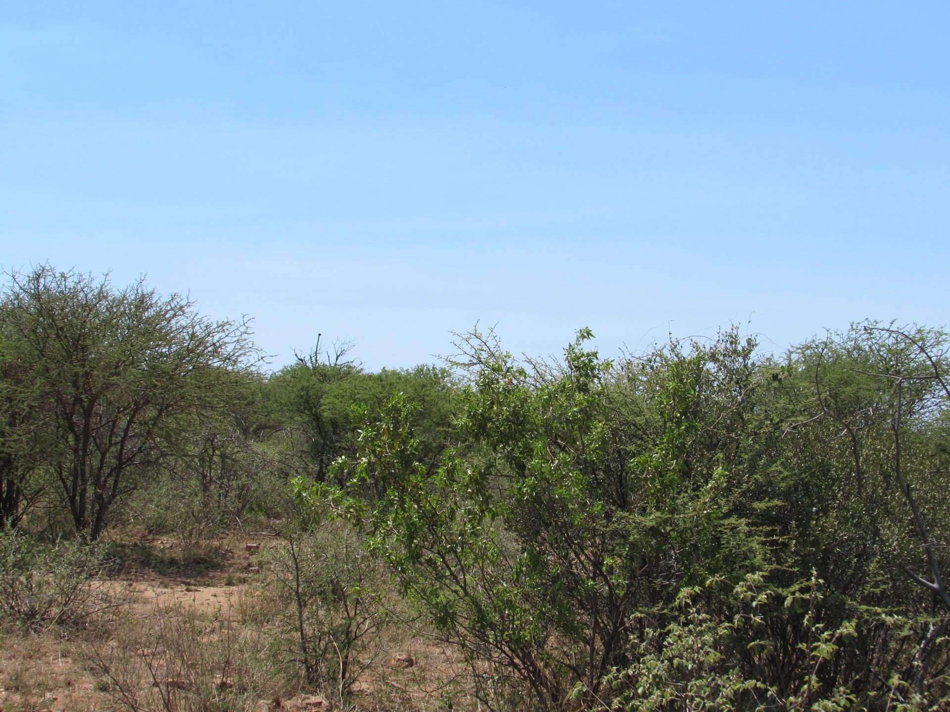 Land in Lion Park For Sale