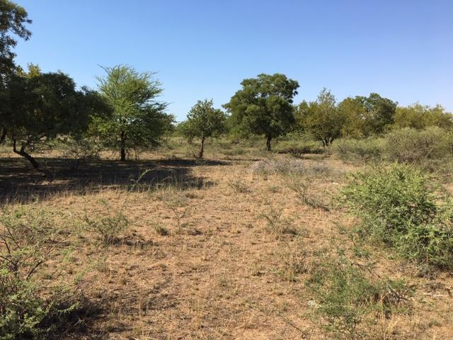 Vacant Land / Plot in Oodi Central For Sale