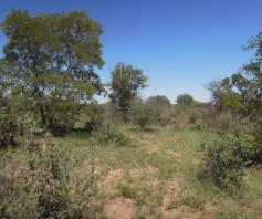 Vacant Land / Plot in Sebina Central For Sale