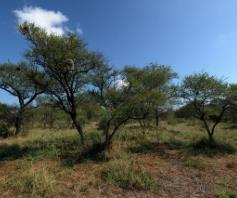 Vacant Land / Plot in Manyana Central For Sale