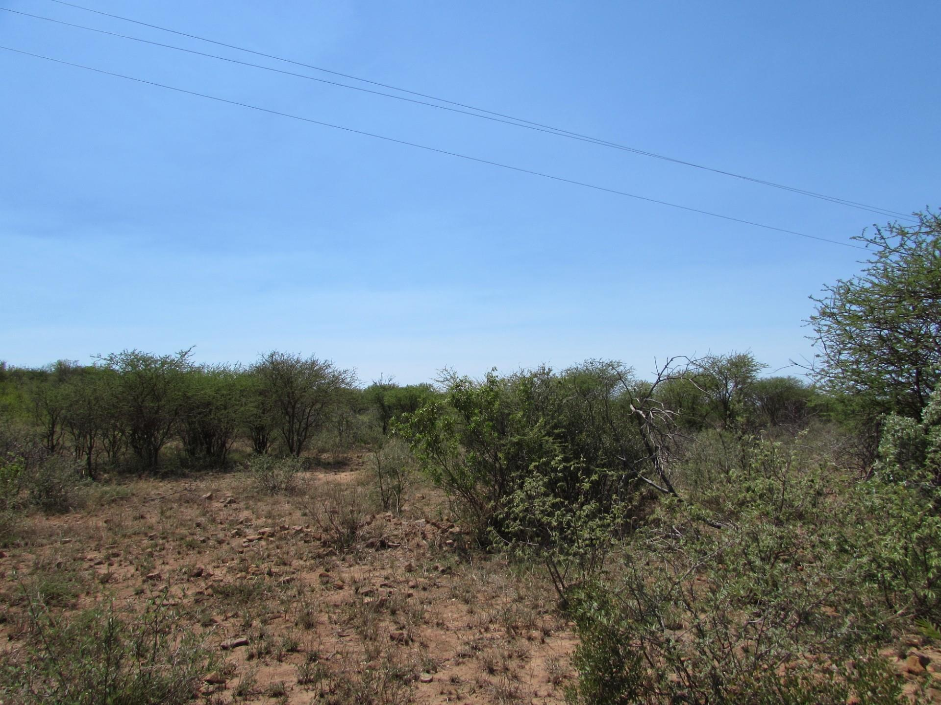 Vacant Land / Plot in Lion Park For Sale