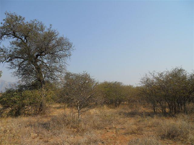 Land in Blyde Wildlife Estate For Sale