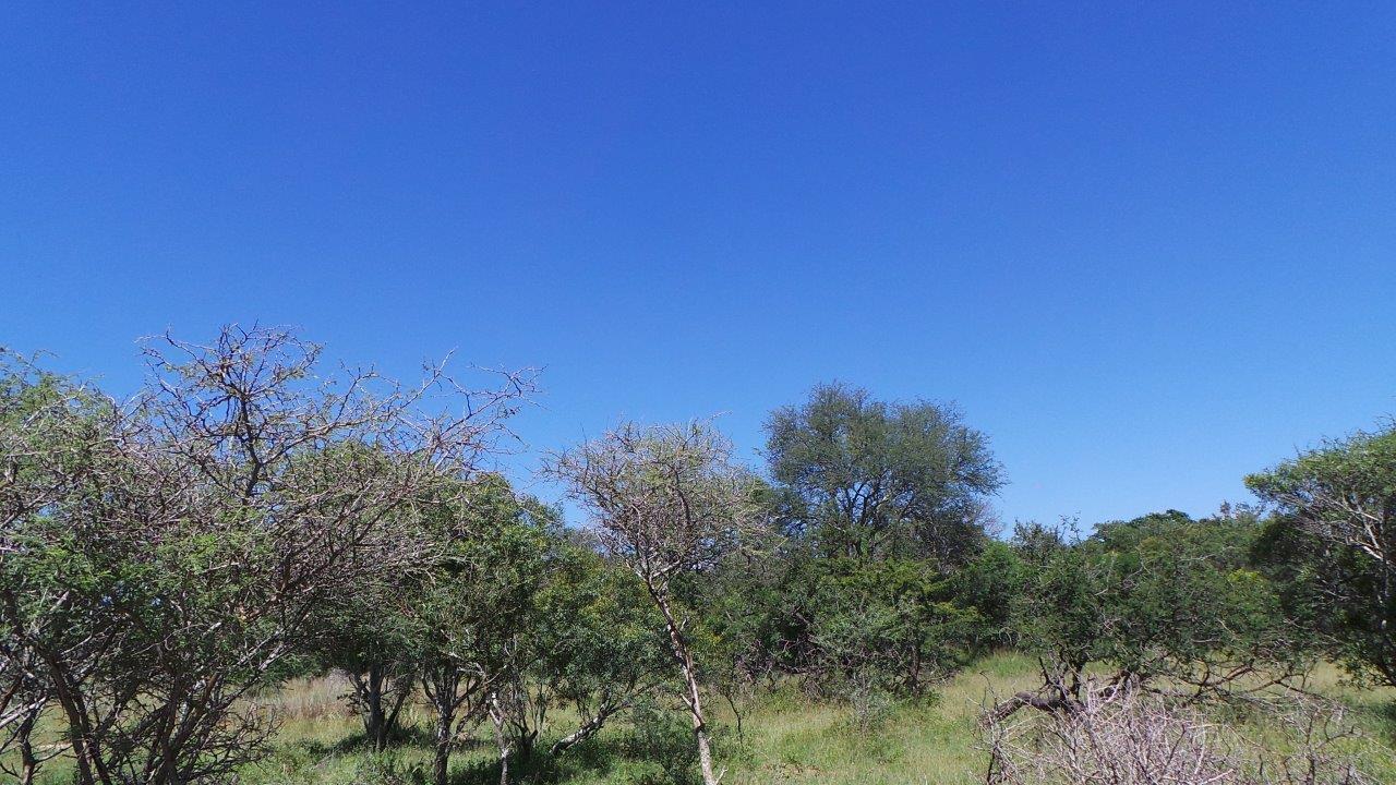 Land in Moditlo Nature Reserve For Sale
