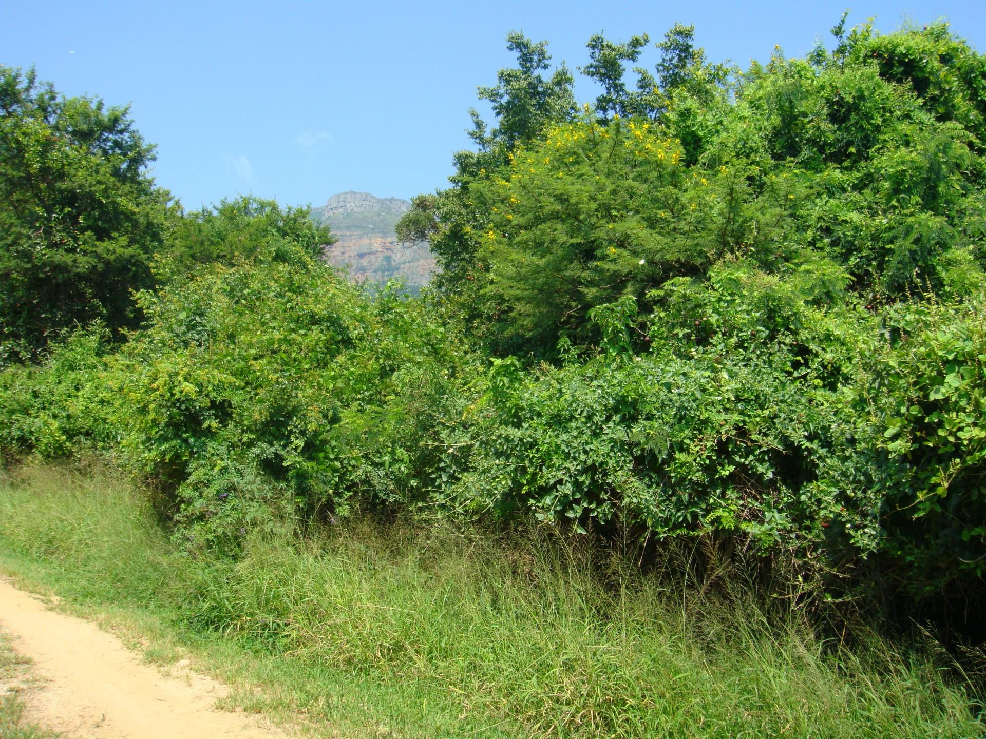 Land in Kampersrus For Sale