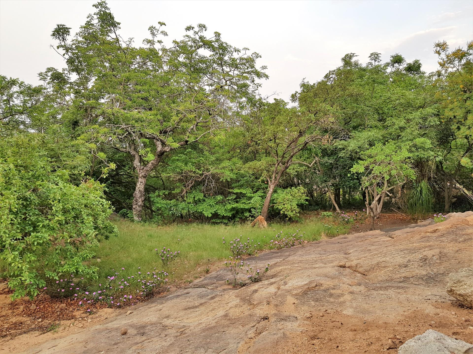 Vacant Land / Plot in Nelspruit Ext 17 For Sale