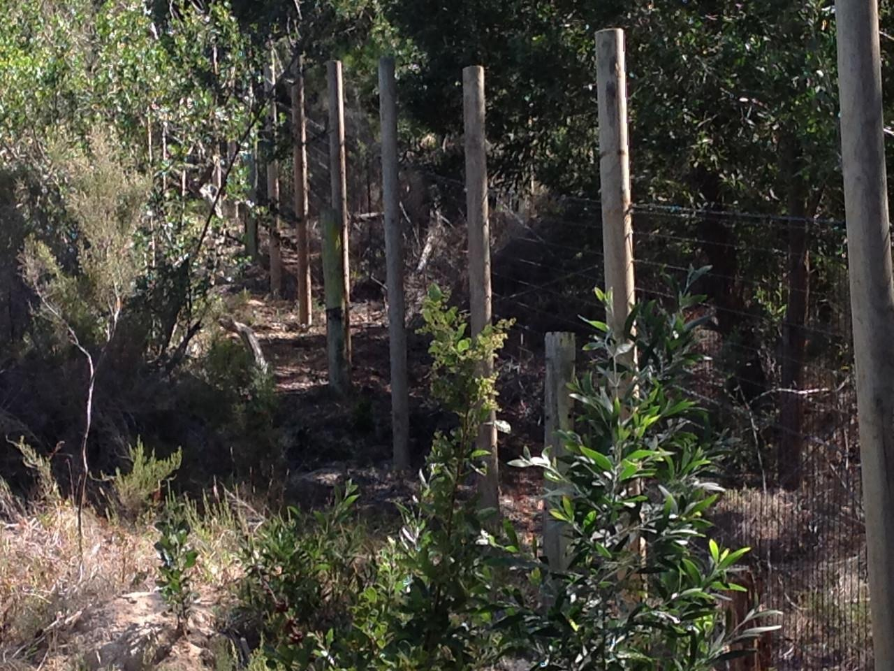 Vacant Land / Plot in Welbedacht For Sale