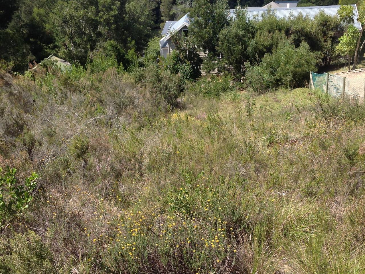 Land in Welbedacht For Sale