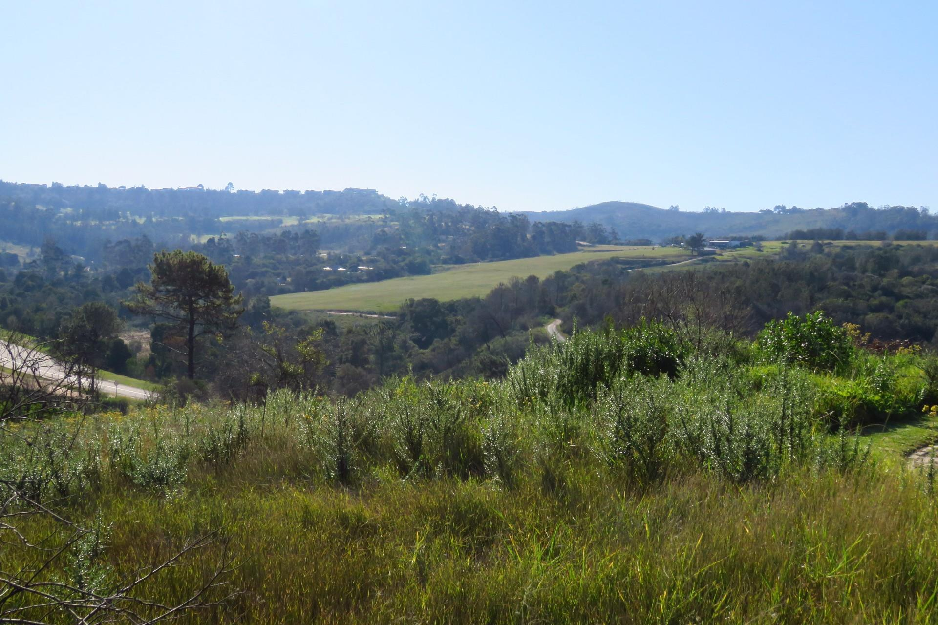 Land in Eastford Vale For Sale