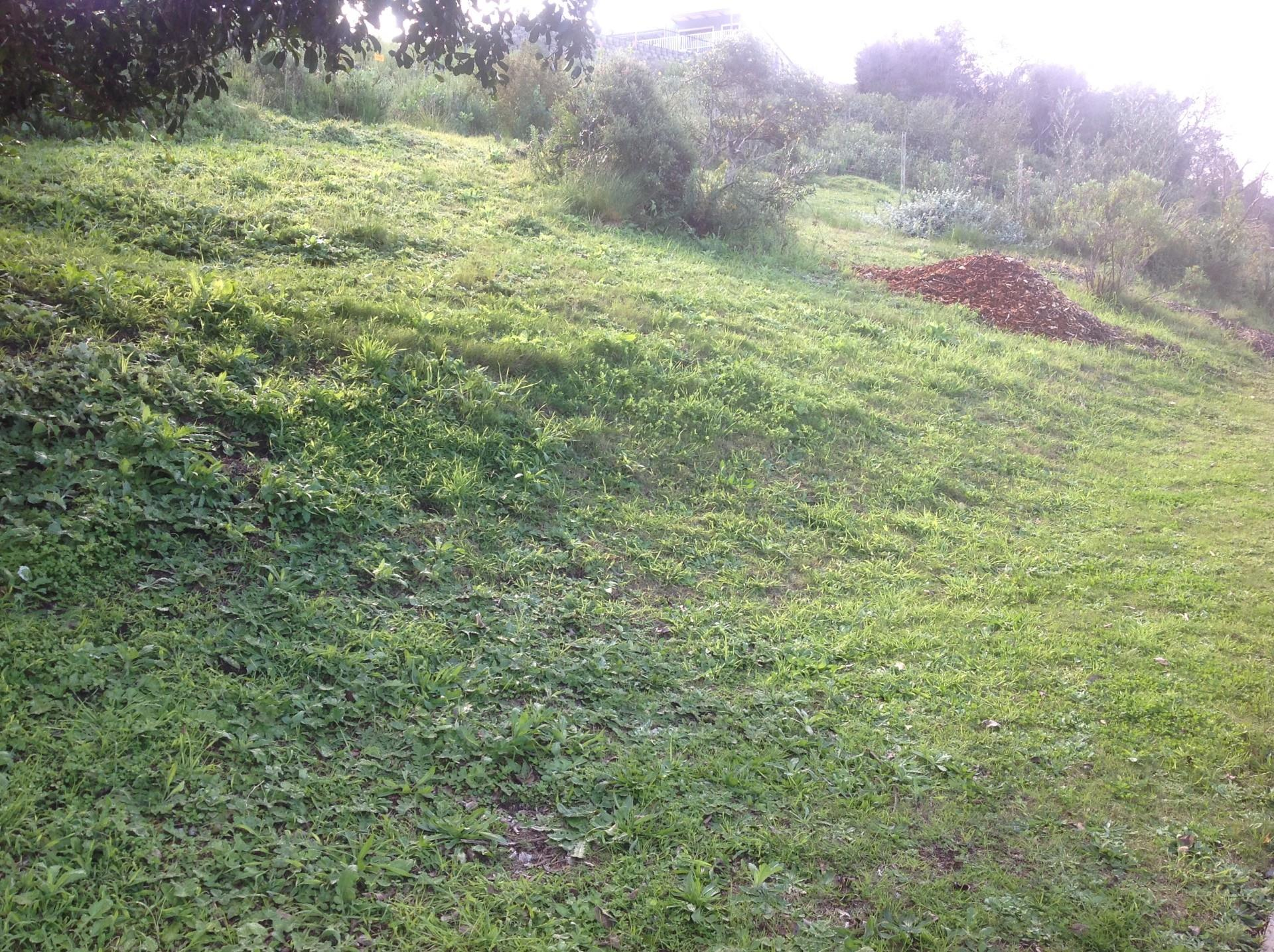 Land in Green Pastures For Sale