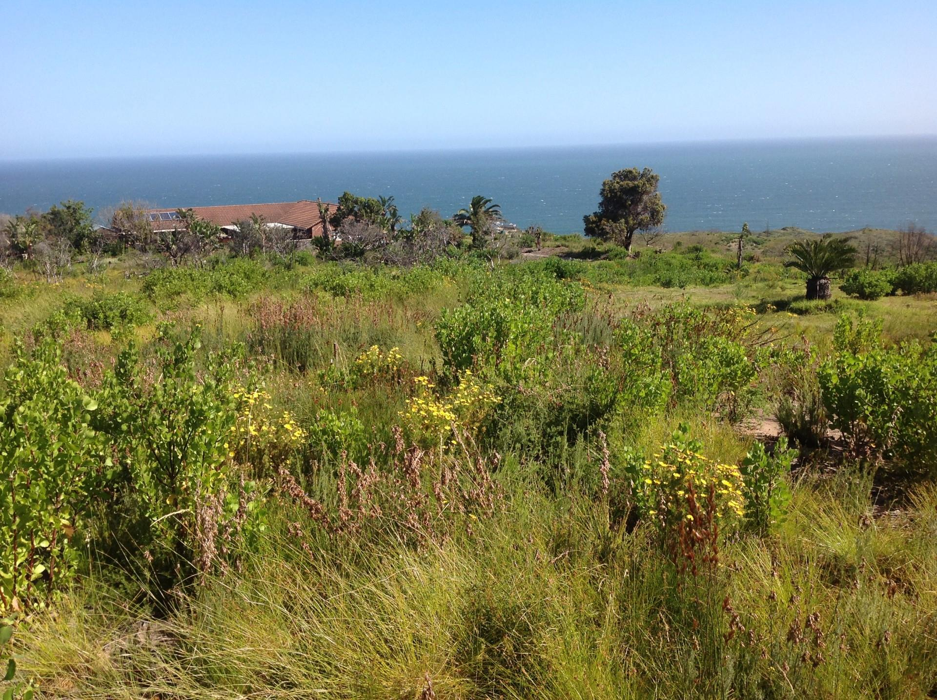 Land in Brenton On Sea For Sale