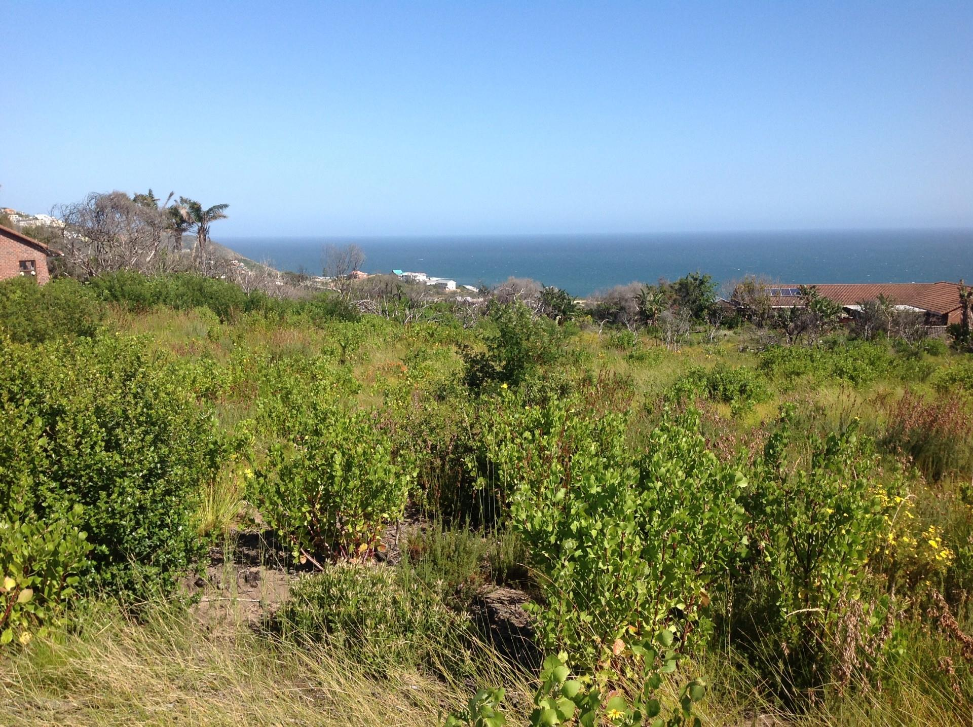 Vacant Land / Plot in Brenton On Sea For Sale