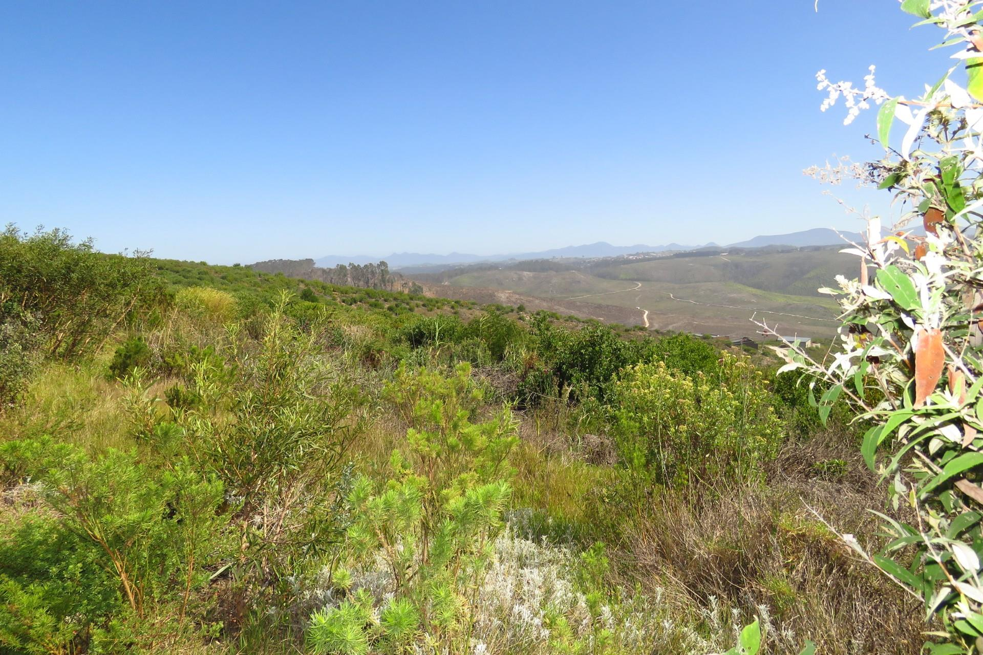 Vacant Land / Plot in Pezula Private Estate For Sale