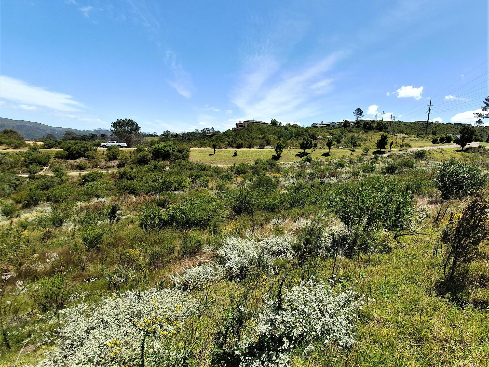 Land in Eastford Glen For Sale