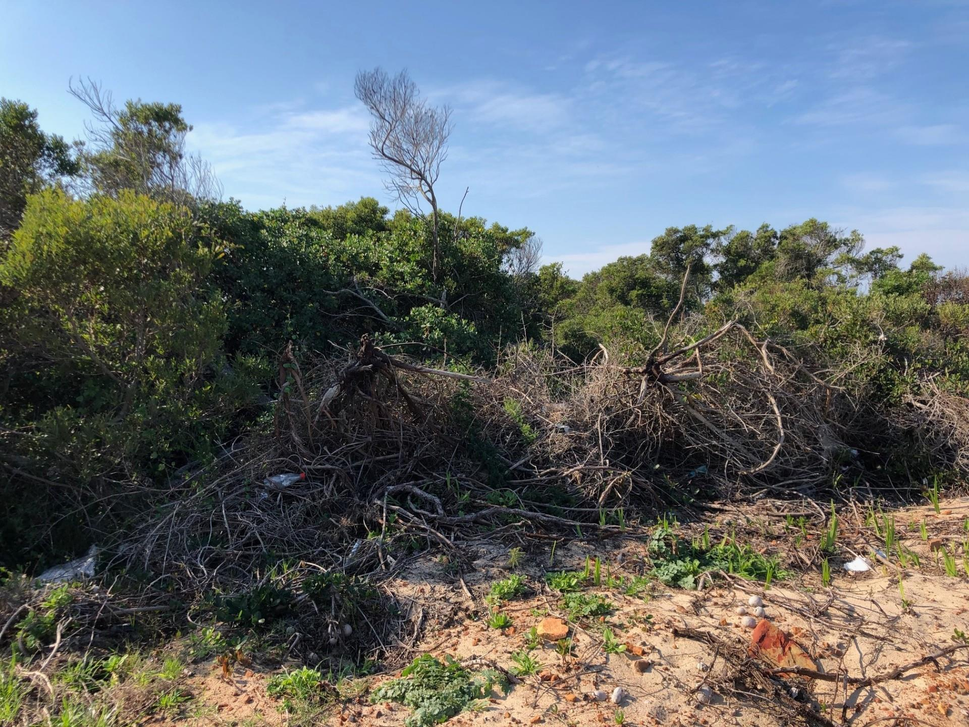 Land in Paradise Beach For Sale