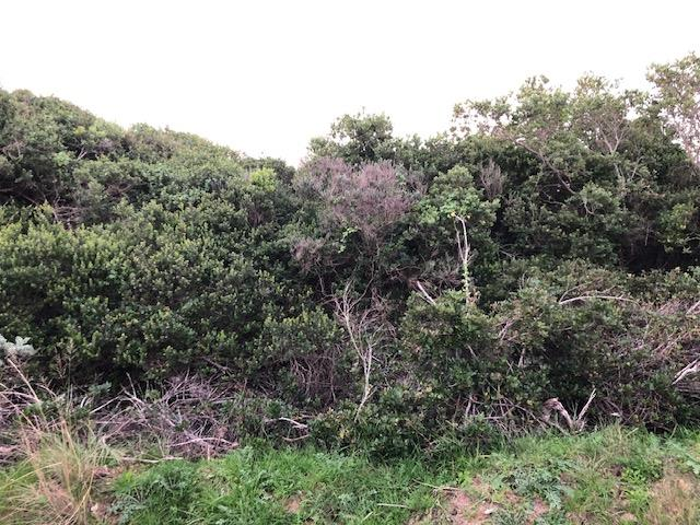 Vacant Land / Plot in Paradise Beach For Sale
