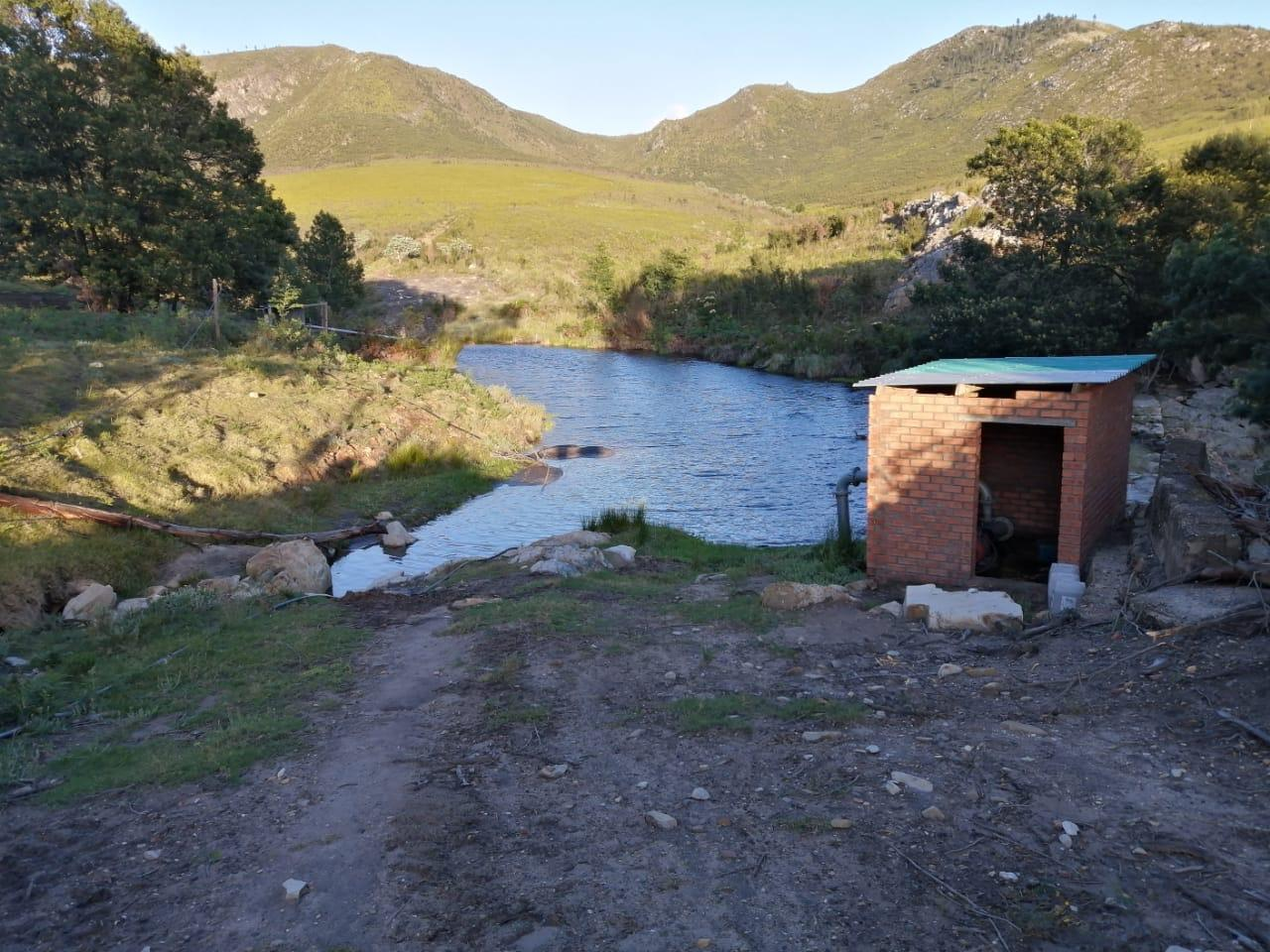 Commercial Farm in Kareedouw For Sale
