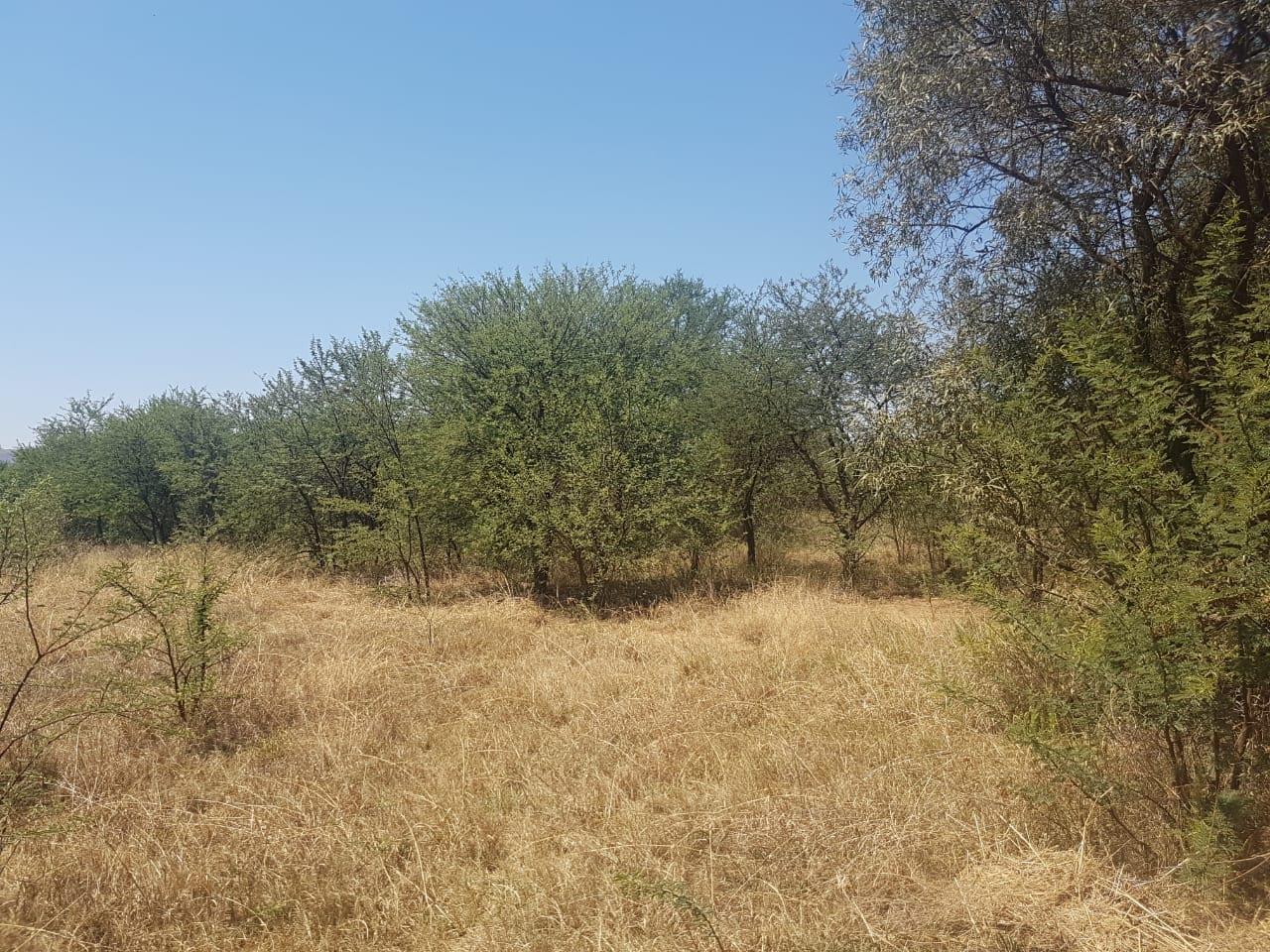 Land in Hartebeestfontein For Sale