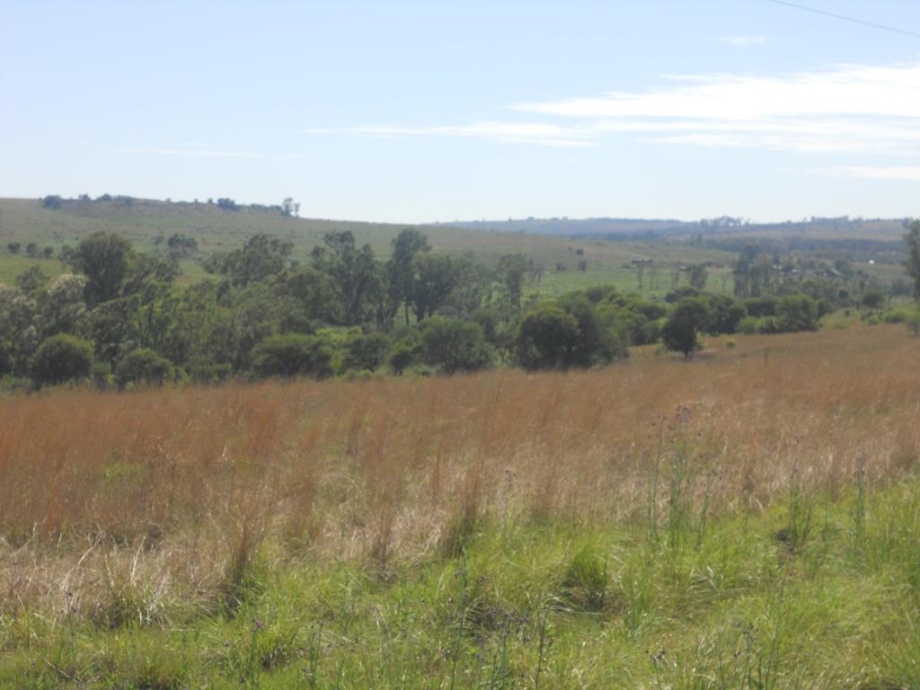Land in Magaliesburg For Sale
