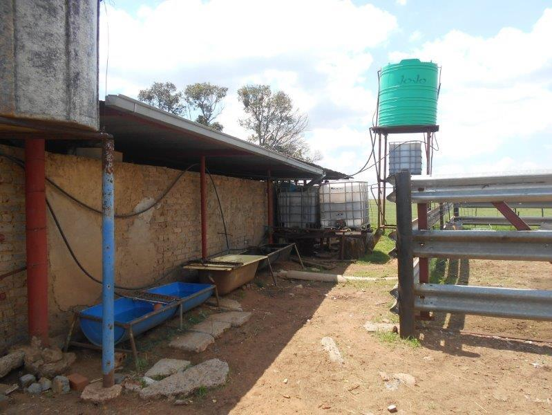 Farm in Rikasrus A H For Sale