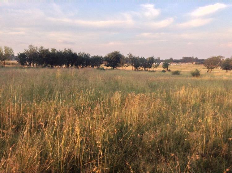Vacant Land / Plot in De Deur For Sale