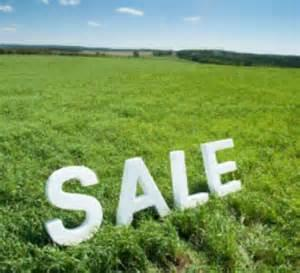 Springs, Struisbult Property  | Houses For Sale Struisbult, Struisbult, Vacant Land  property for sale Price:250,000