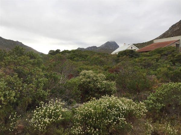 Rooi Els, Rooi Els Property  | Houses For Sale Rooi Els, Rooi Els, Vacant Land  property for sale Price:795,000