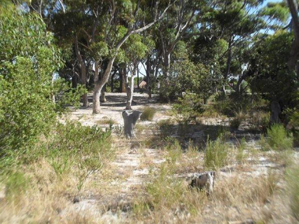 Kleinmond, Vacant Land  property for sale Price:2,100,000