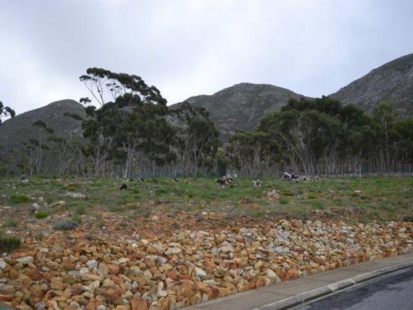 Hermanus, Berghof Property  | Houses For Sale Berghof, Berghof, Vacant Land  property for sale Price:930,000