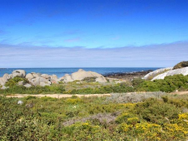 Jacobsbaai property for sale. Ref No: 13447545. Picture no 15