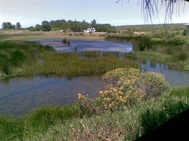 Yzerfontein, Yzerfontein Property  | Houses For Sale Yzerfontein, Yzerfontein, Farms 8 bedrooms property for sale Price:13,500,000