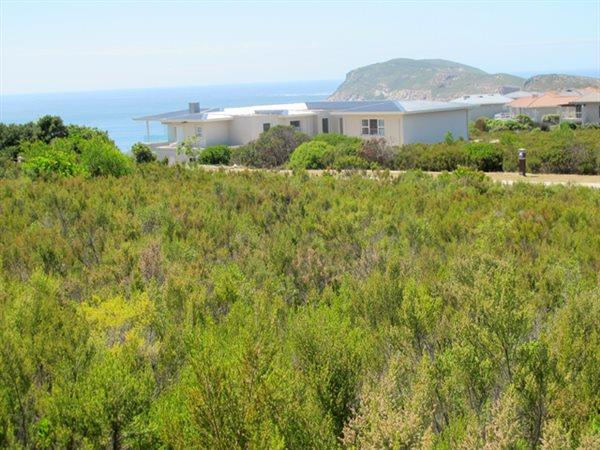 Plettenberg Bay, Whale Rock Property  | Houses For Sale Whale Rock (Garden Route), Whale Rock, Vacant Land  property for sale Price:1,850,000