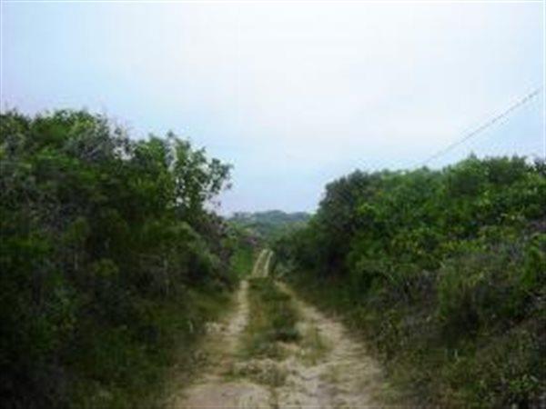 Wilderness - ZAF (photo 1)