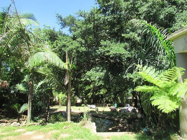 Fairview, Empangeni - ZAF (photo 2)