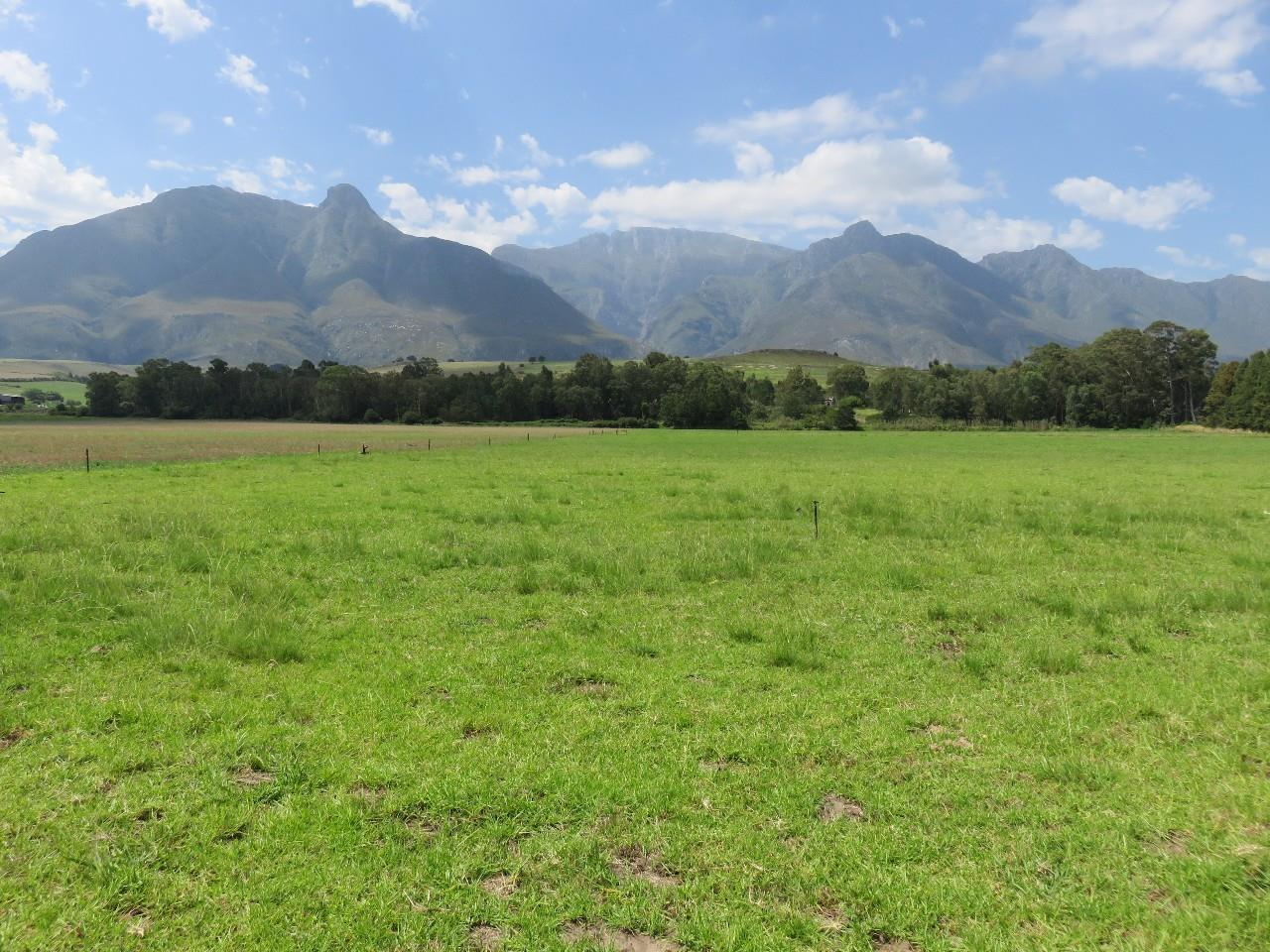 Swellendam - ZAF (photo 1)