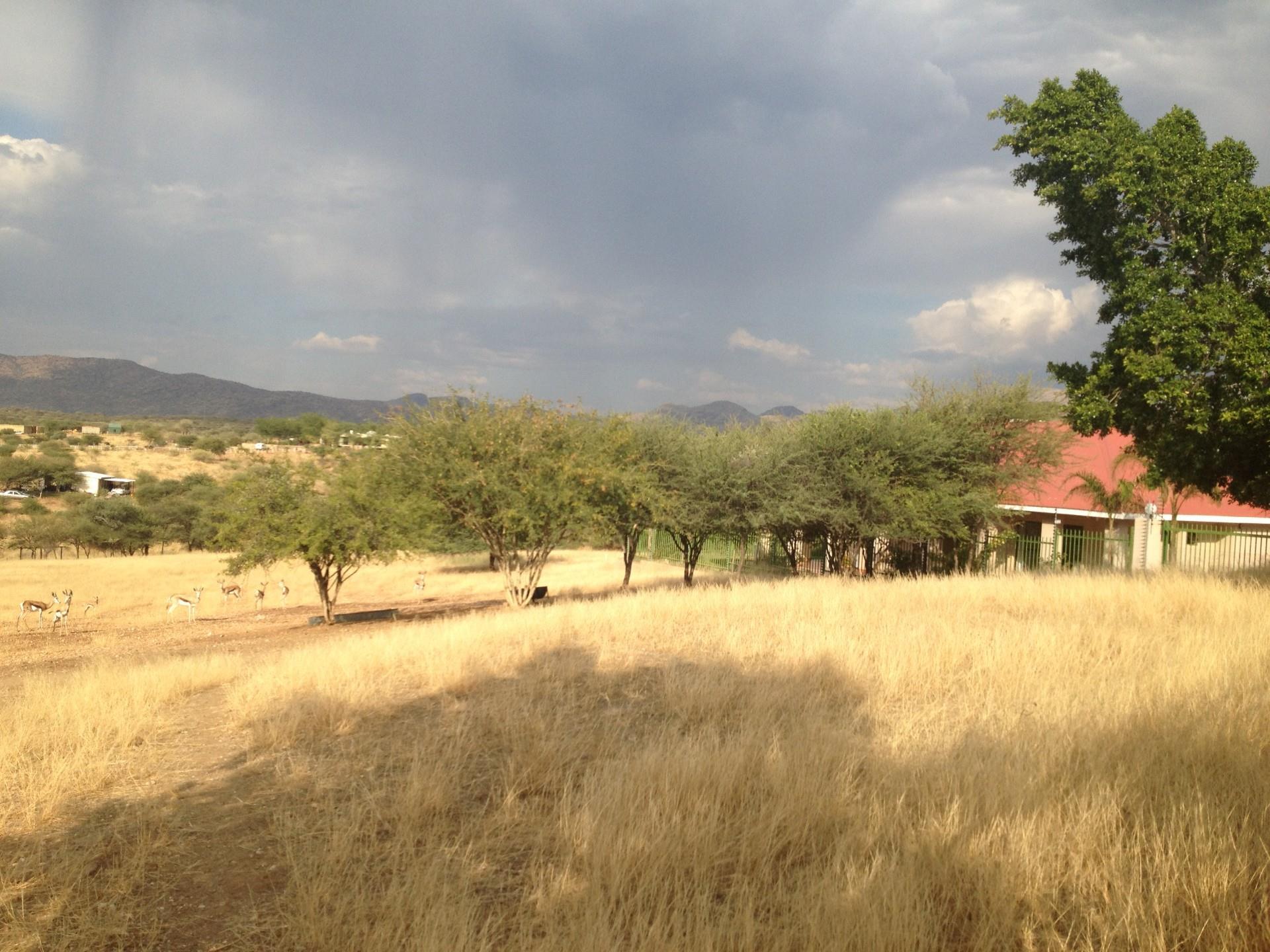 Farm in Brakwater For Sale