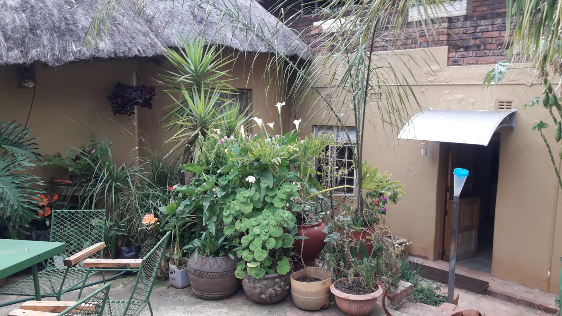 2 Bedroom House To Rent in Louis Trichardt