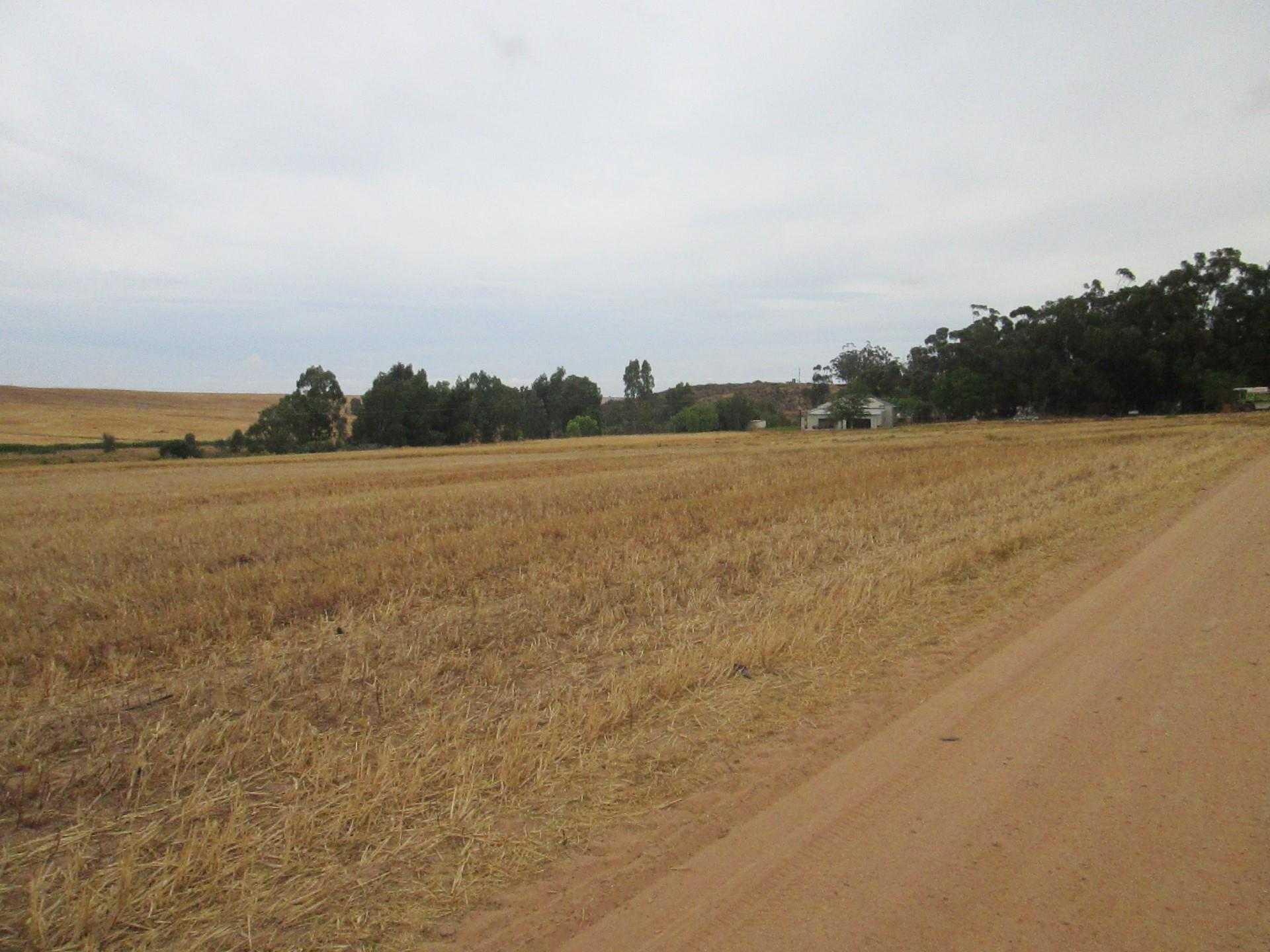 Farm in Piketberg For Sale