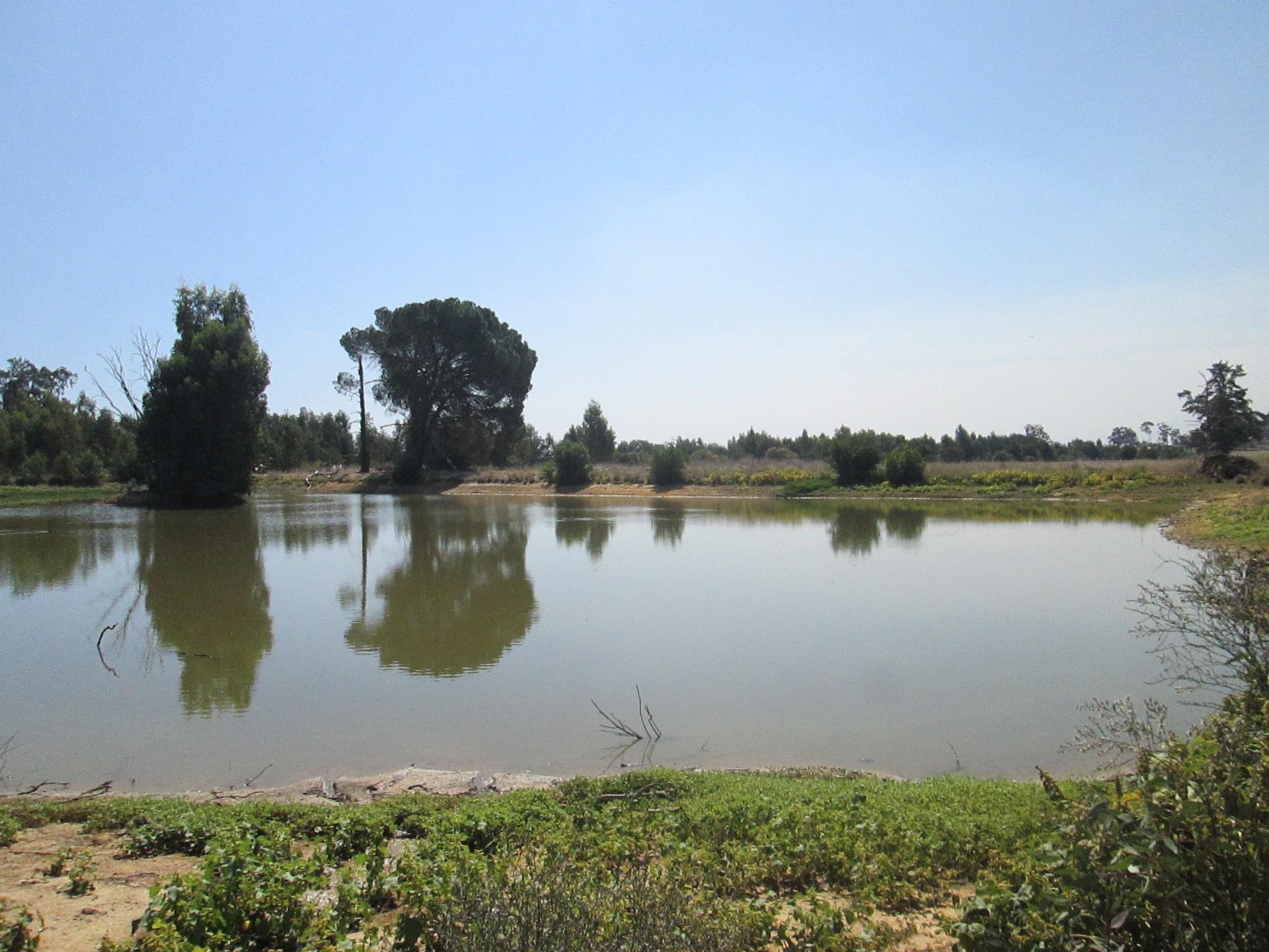 Farm in Riebeek Valley Rural For Sale