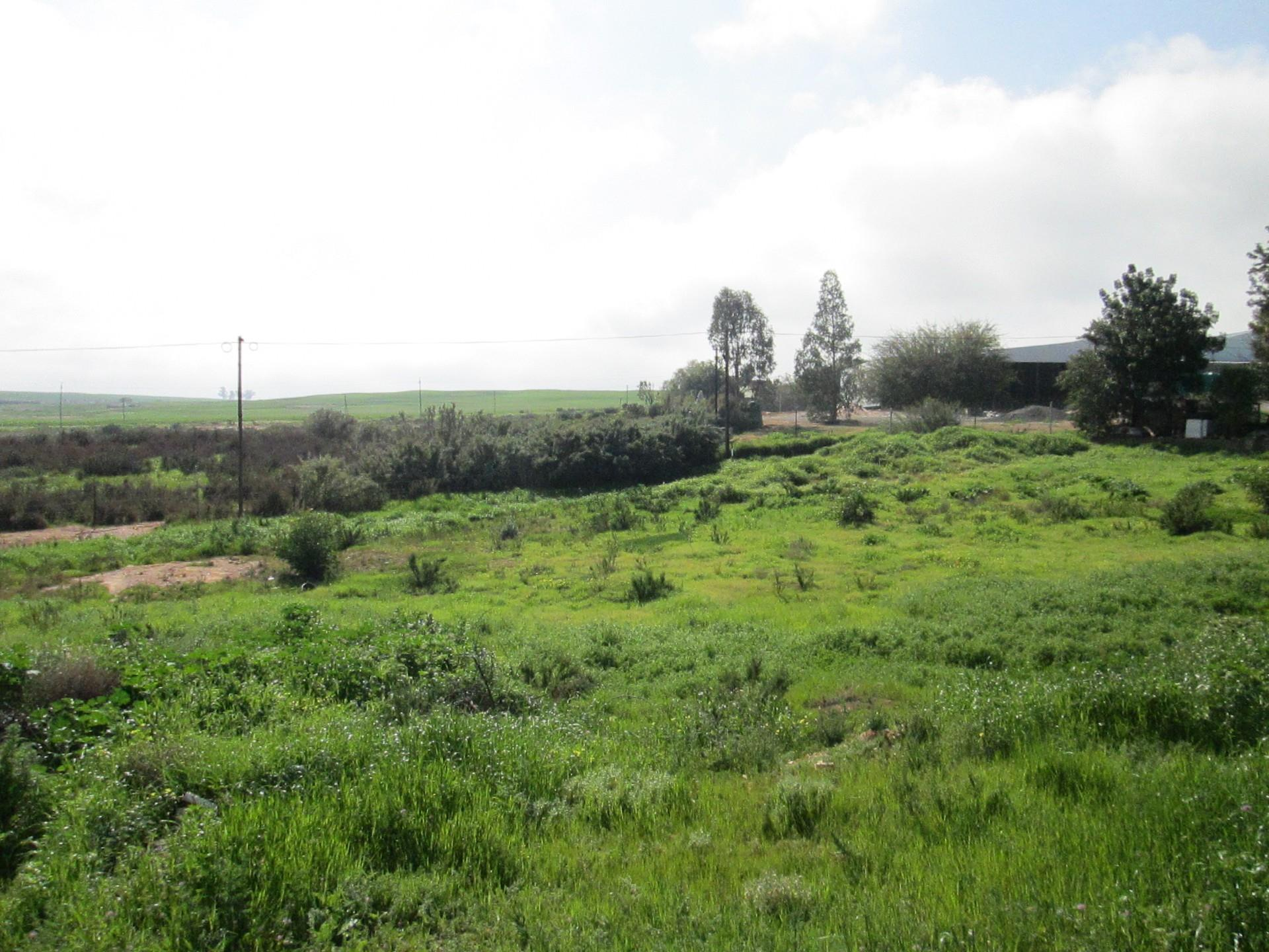 Vacant Land / Plot in Eendekuil For Sale