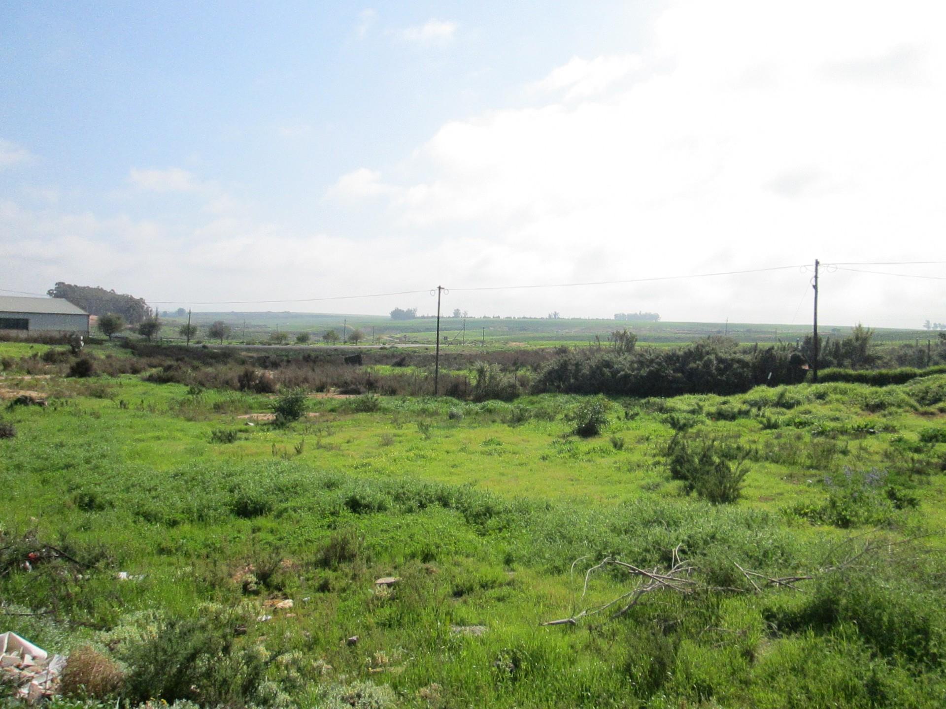 Vacant Land / Plot in Eendekuil For Sale