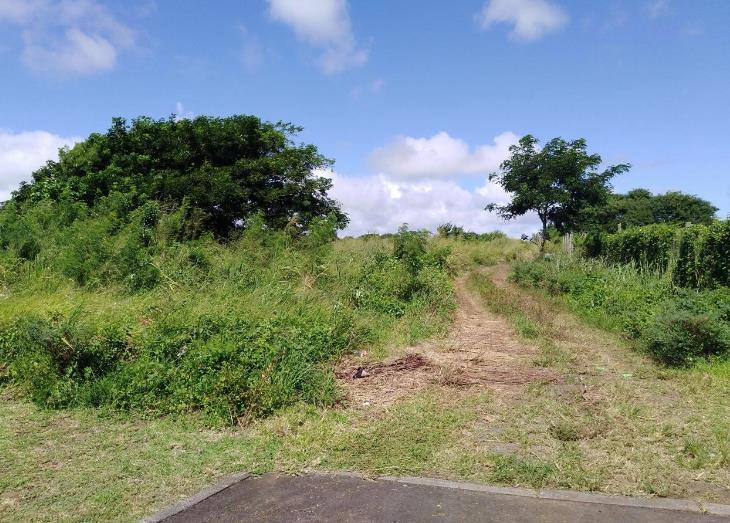 Vacant Land / Plot in Forbach For Sale