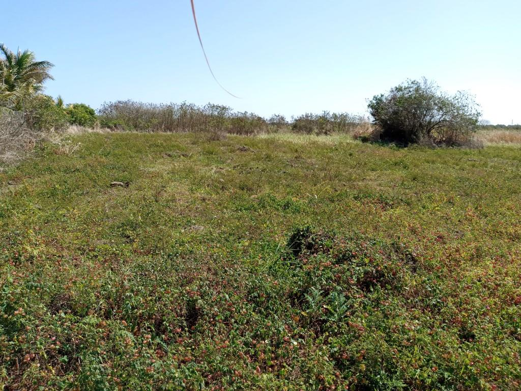 Vacant Land / Plot in Poudre D'or For Sale